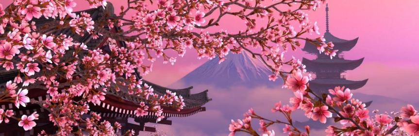 Япония: праздник цветениясакуры