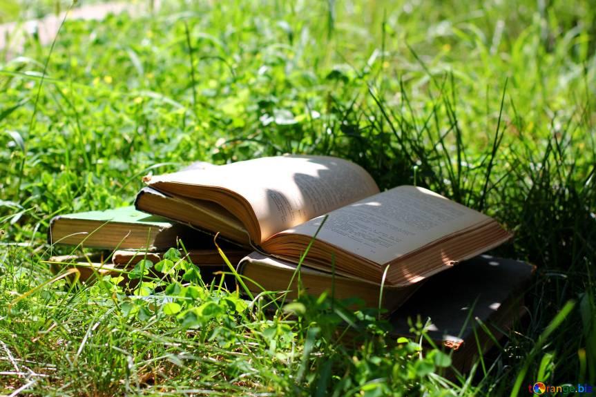 """""""Cartea bună e ca şi o conversaţie cu un om deştept."""" LevTolstoi"""